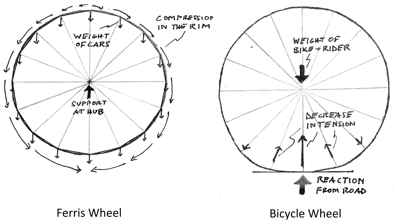 Bicyclewheel Info
